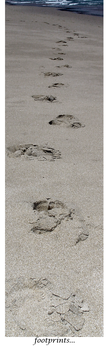 Footprints... by GrowingUpNextMonday
