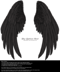Winged Fantasy V2.2 - Black by Thy-Darkest-Hour