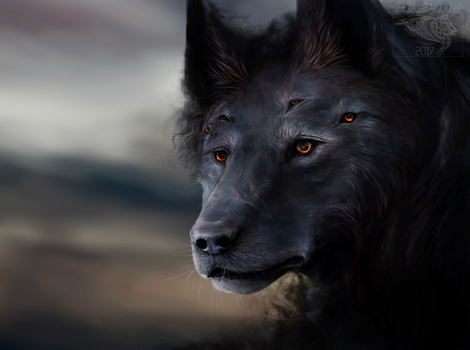 Barghest by FellFallow
