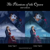 Phantom of the Opera Sketchbook Cover Poll by artofMilica