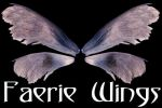 Faerie Wings 1 by Armathor-Stock