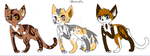 cat Adoptables for forgottenwarriors group by StarFlareTheCat
