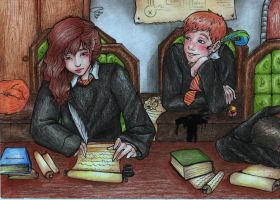 Hermione and Ron by shut-up136