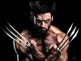 The Wolverine - Hugh Jackman by brentonmb