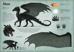 Character sheet for Akor by Dragarta