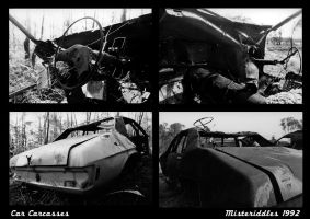 Car Carcasses by misteriddles