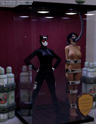 Catwoman Trophy Case by thejpeger