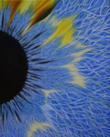 Eye Study by MortNevermore
