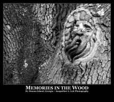 Memories in the Wood by Isquiesque