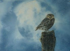 The Owl and the Moon. by SueMArt
