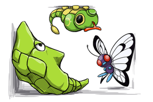 The Caterpie Family