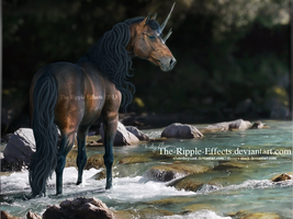 AT, the Nightshade by The-Ripple-Effects