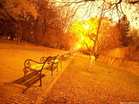 psychedelic park photo session by juroo