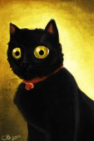 Poe my cat by sketchdoll