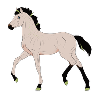 N3818 Padro Foal Design by casinuba