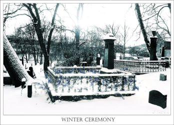 Winter Ceremony by andaria
