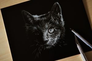 Playing with scratchboard by mangakasan