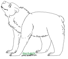 Grizzly Makeable by Piranis
