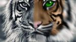 Tiger (Original Grayscale vs Digital painting) by DemonaTheOperator