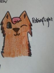 Robinflight headshot by Blue-frost-warrior