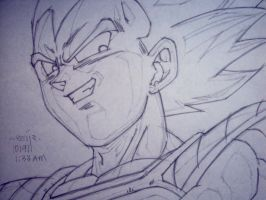dragonball z: vegeta by reijr