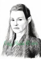 Tauriel by catmuns