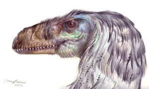 Dromeaosaurid by Andalgalornis