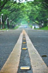 One Step at a Time by aplit