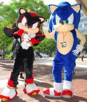 Sonic and Shadow cosplay by StormAkima