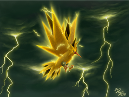 Zapdos, lord of thunderstorms