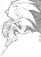 Sonic The Hedgehog by MaRaMa-Artz