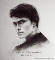 Tom Marvolo Riddle by Michelle-Winer