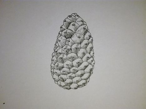 Inktober 2017, Day 12: Pinecone by GLangGould