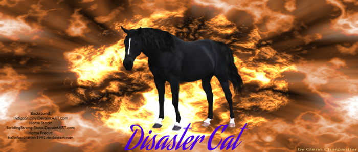 Disaster Cat by Star--Graphics