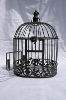 Birdcage 1 by tsb-stock