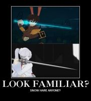 Demotivational Poster RWBY - Snow Hare by JustRWBY-RK