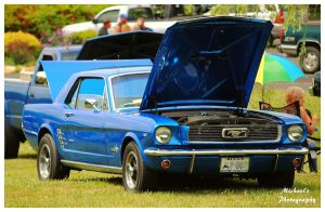 A 1966 Mustang by TheMan268
