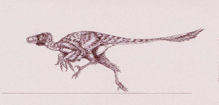 Graciliraptor lujiatunensis by Kahless28