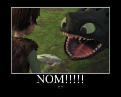 How to Train Your Dragon demotivational poster by Shein08Arekku16