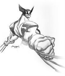 Wolverine Comission by basicnoir