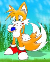 Tails Fox by lv-a42