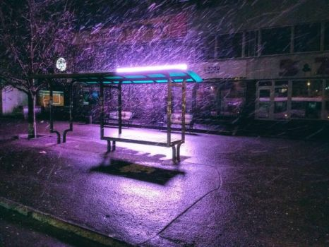 The night bus stop is resting by DanDarvin