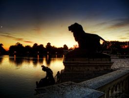 The Lion watches by nadril83