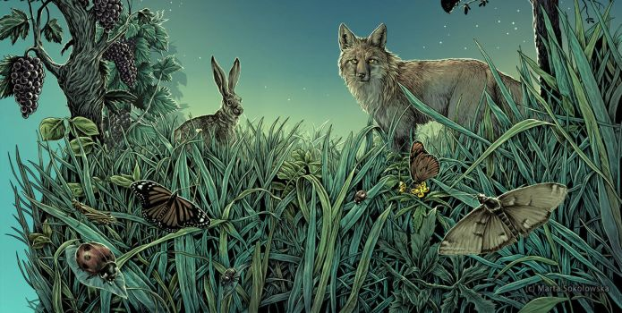 Meadow - label illustration commission by weremoon