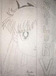 Sailor Venus Cover sketch by DavisJes