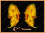 Fractal painted fire wings png by TinaLouiseUk