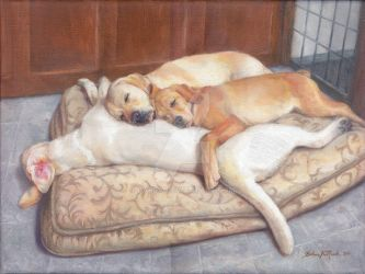 Dogpile by Babsa