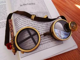 Extreme Librarian Steampunk Goggles by Fandragon