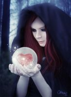 I have heart in my hands by olkag