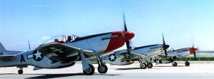 Mustangs at Shafter 93 by PzlWksMedia